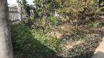Bán đất Xã Ba Trại, Ba Vì