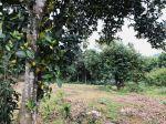 Bán đất tại Xã Hòa Sơn - Lương Sơn